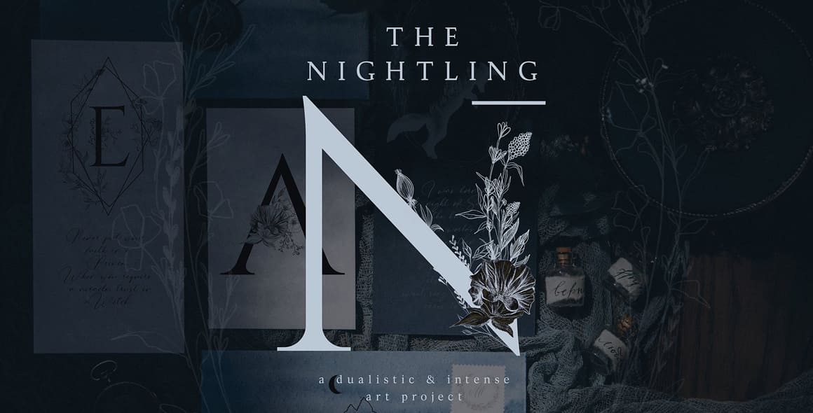 The Nightling – Art Project